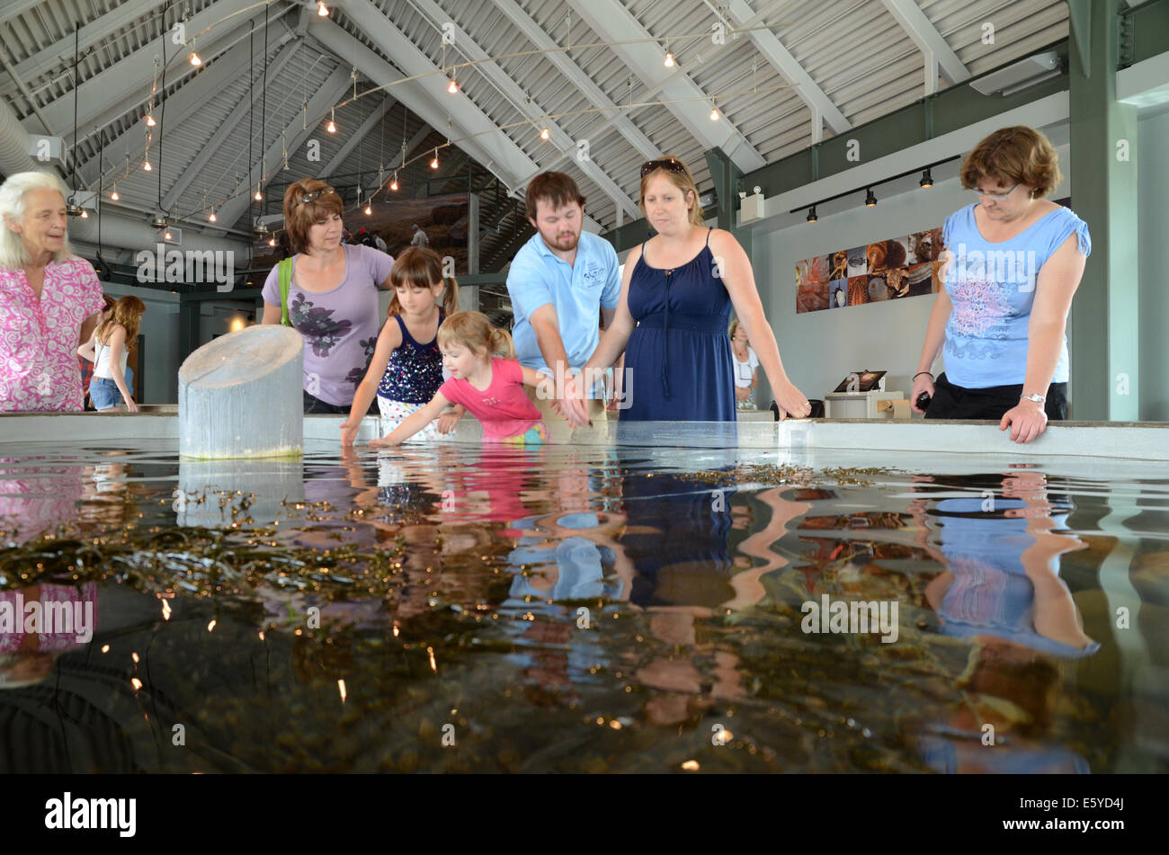 The Huntsman Marine Aquarium, St Andrews, New Brunswick Stock Photo ...
