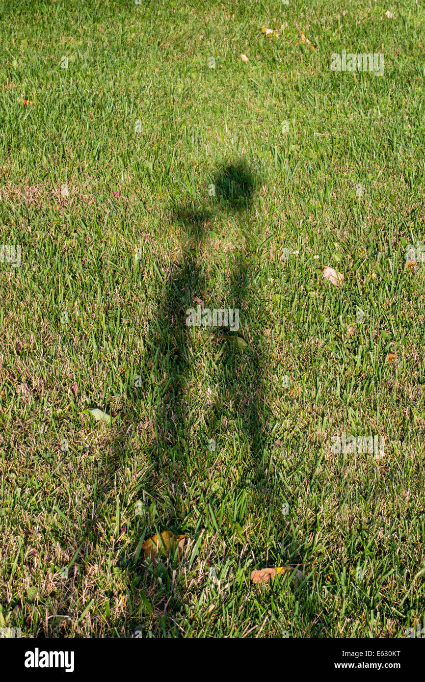 shadow-of-camera-on-a-tripod-on-grass-E6