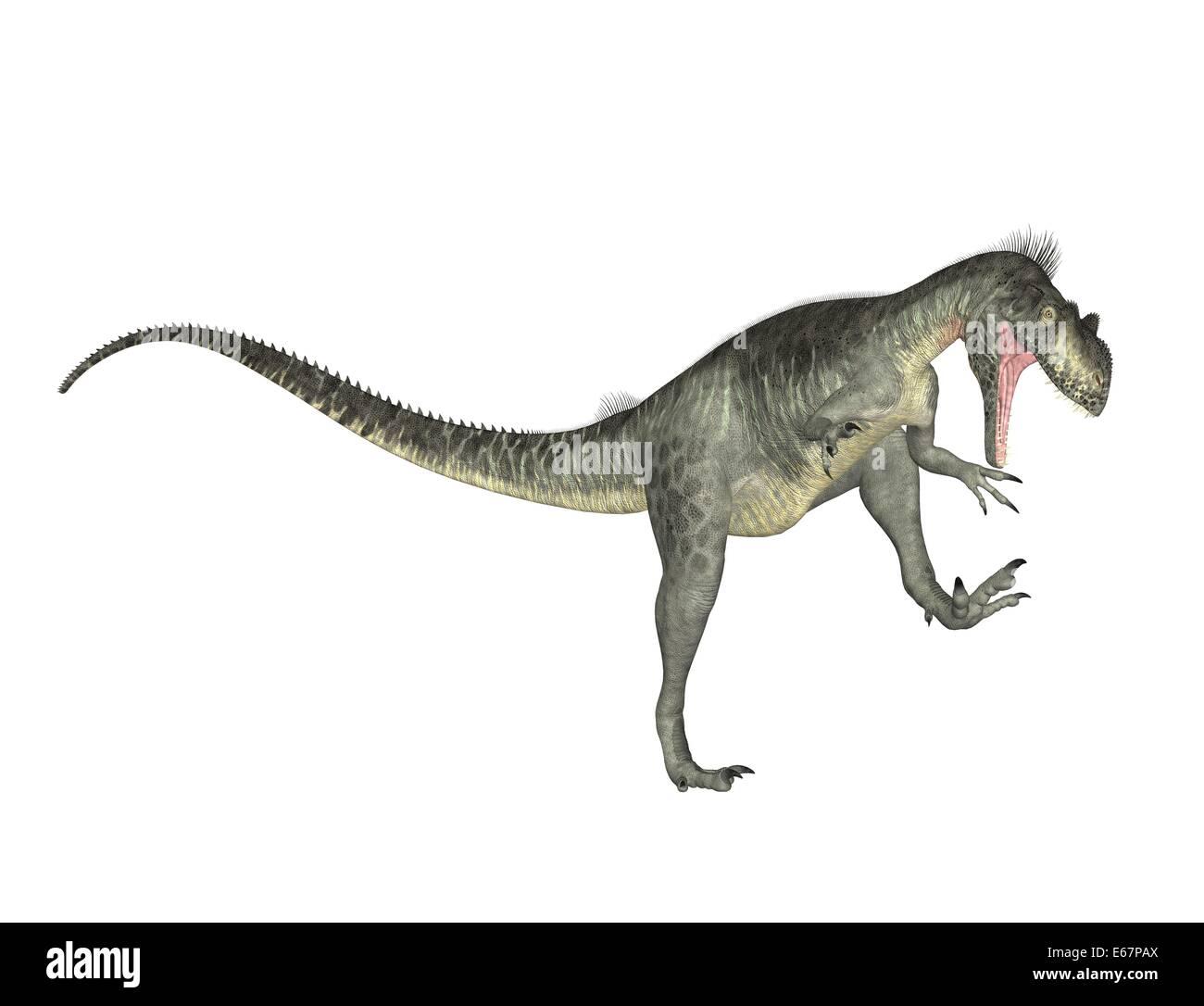 dinosaurier megalosaurus dinosaur megalosaurus stock image