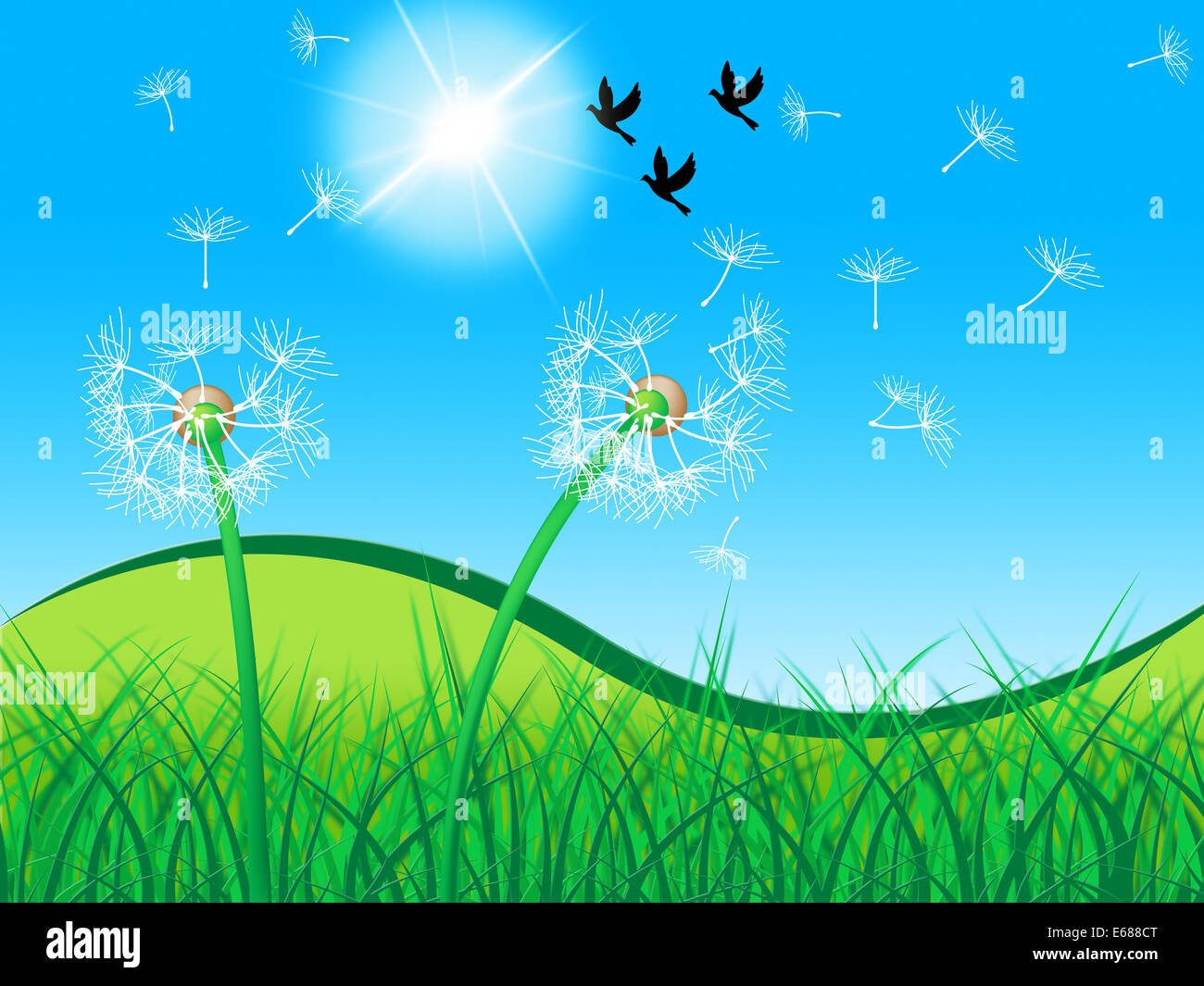 birds grass meaning dandelion flower and nature stock photo, Natural flower