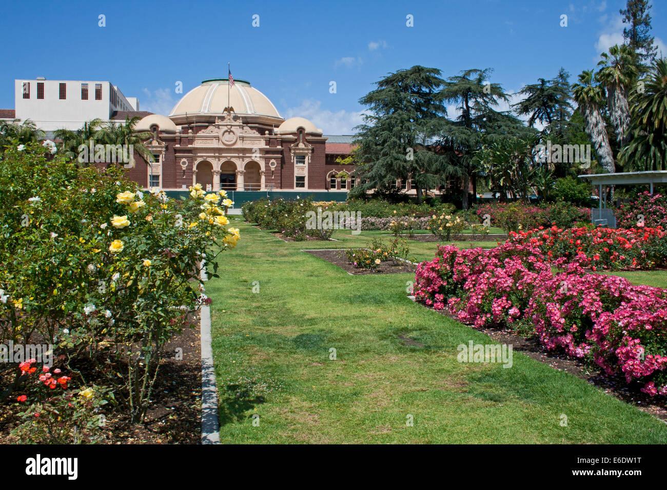 Rose Garden, Exposition Park, Los Angeles, California, USA