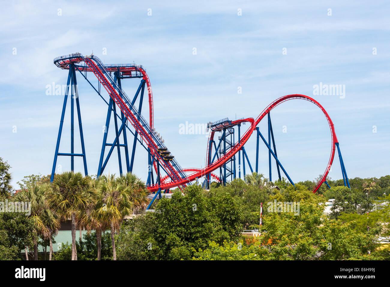 Sheikra Roller Coaster At Busch Gardens Theme Park In Tampa Florida Stock Photo Royalty Free