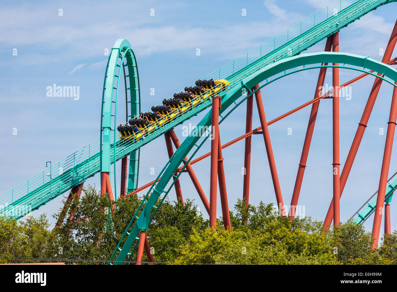 Kumba Roller Coaster At Busch Gardens Theme Park In Tampa Florida Stock Photo Royalty Free