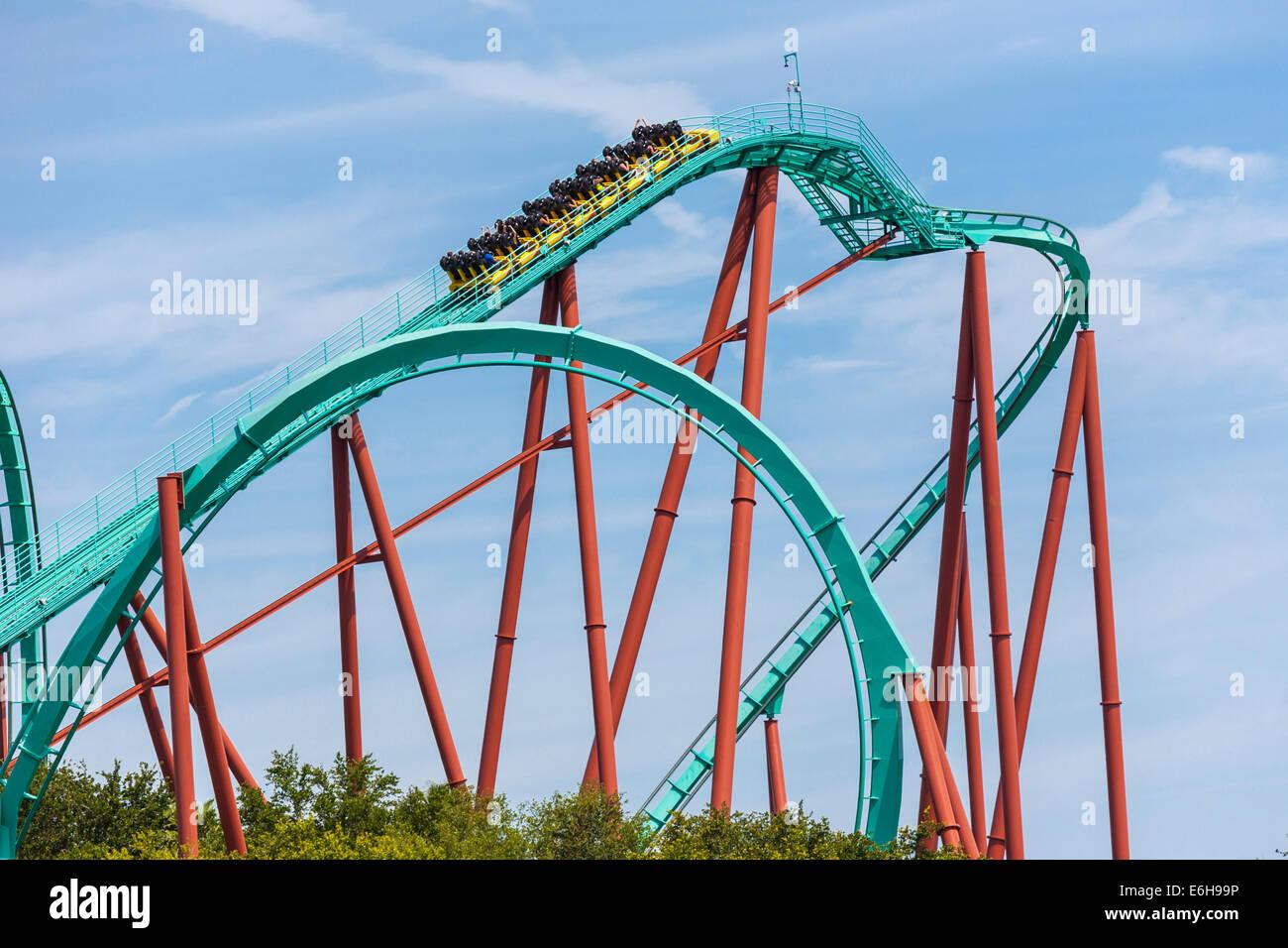 Kumba Roller Coaster At Busch Gardens Theme Park In Tampa Florida Stock Photo Royalty Free