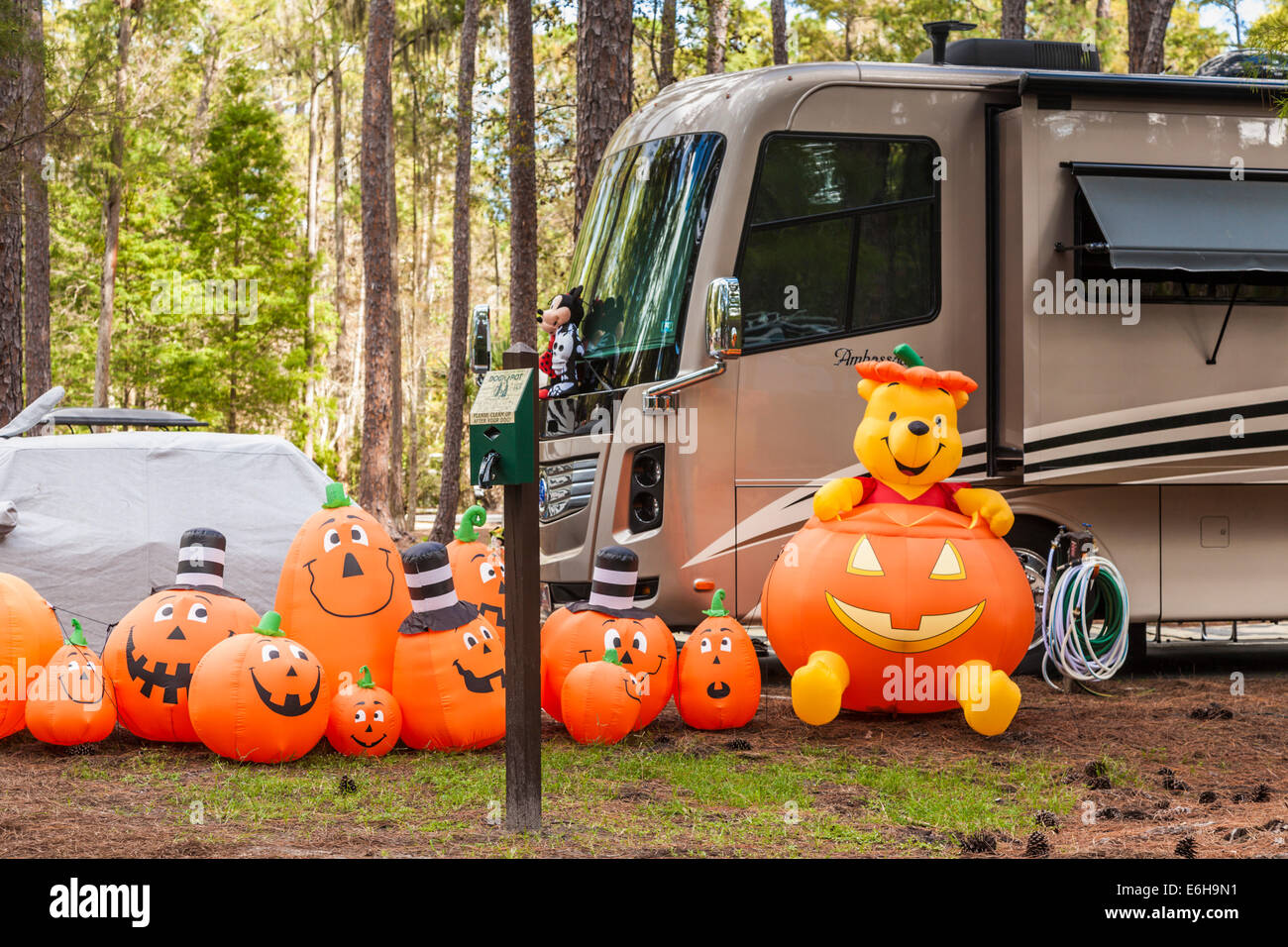Pumpkins and Winnie the Pooh Halloween decorations in Fort ...
