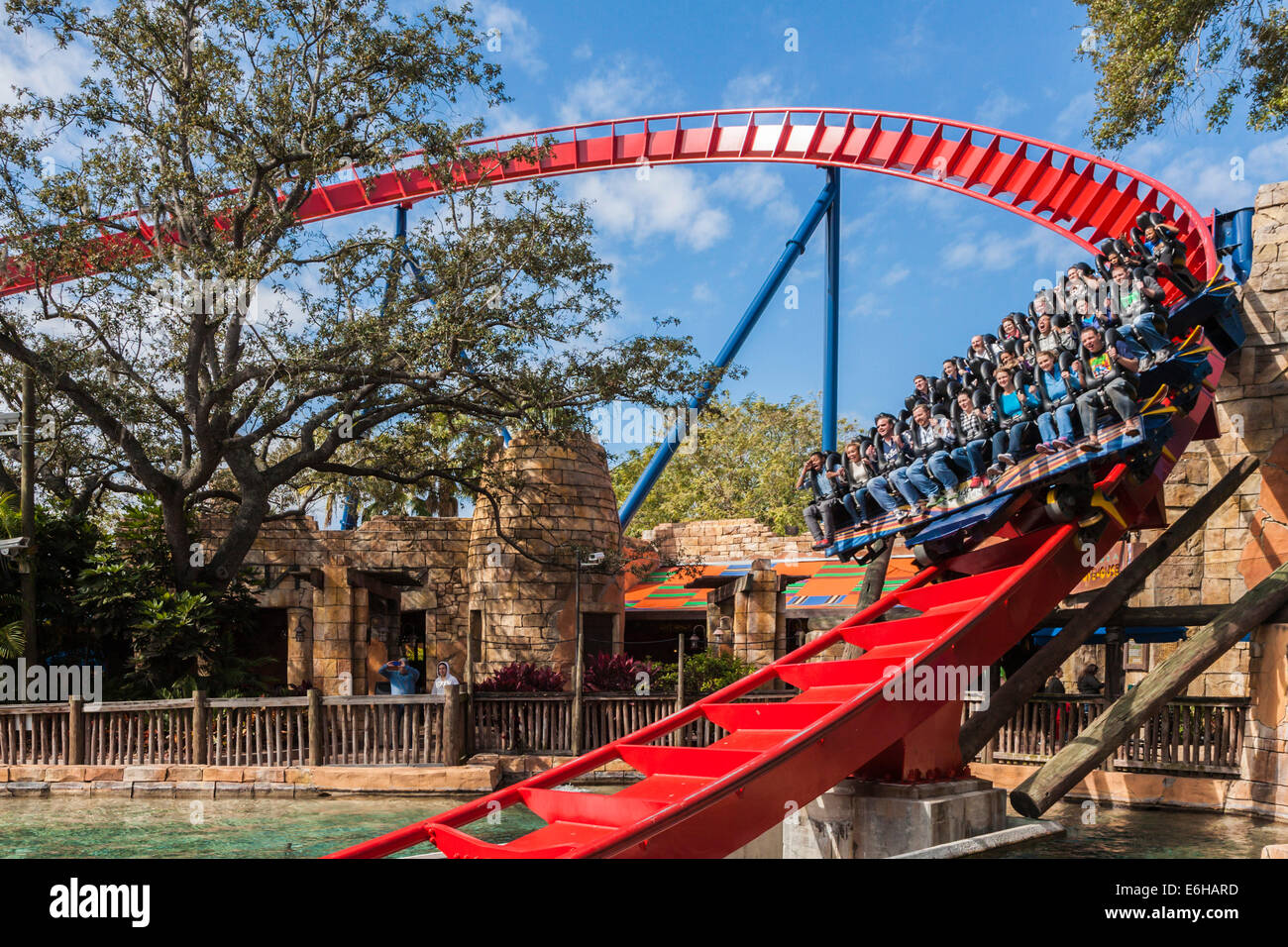 Park Guests Ride The Sheikra Roller Coaster At Busch Gardens Theme Stock Photo Royalty Free