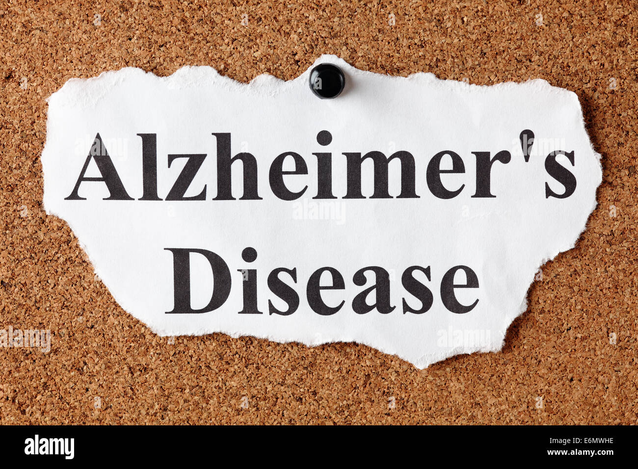 abstract for alzheimers research paper