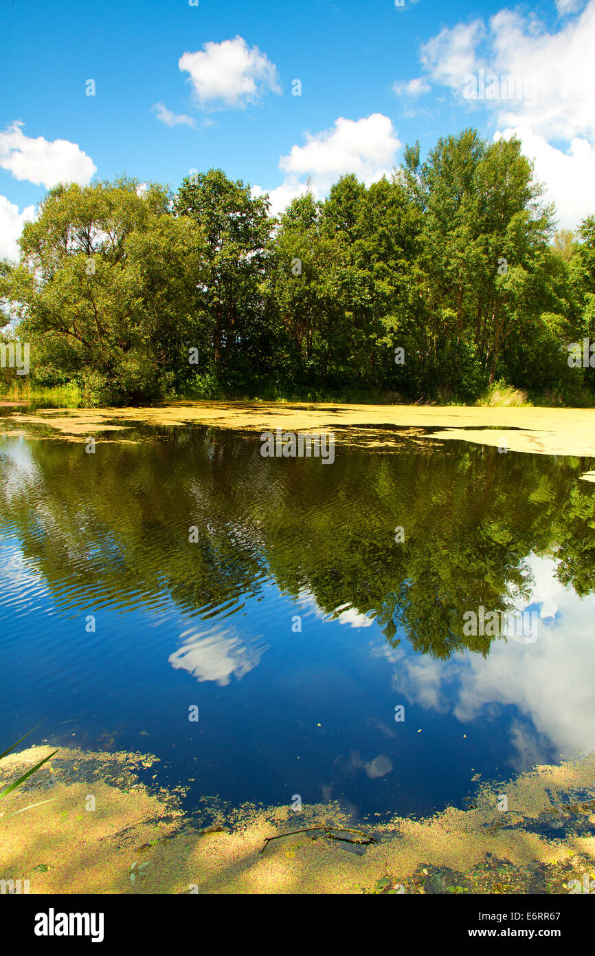 Lake Of The Woods In A Beautiful Place Eastern Europe Stock Photo Royalty Free Image 73052511