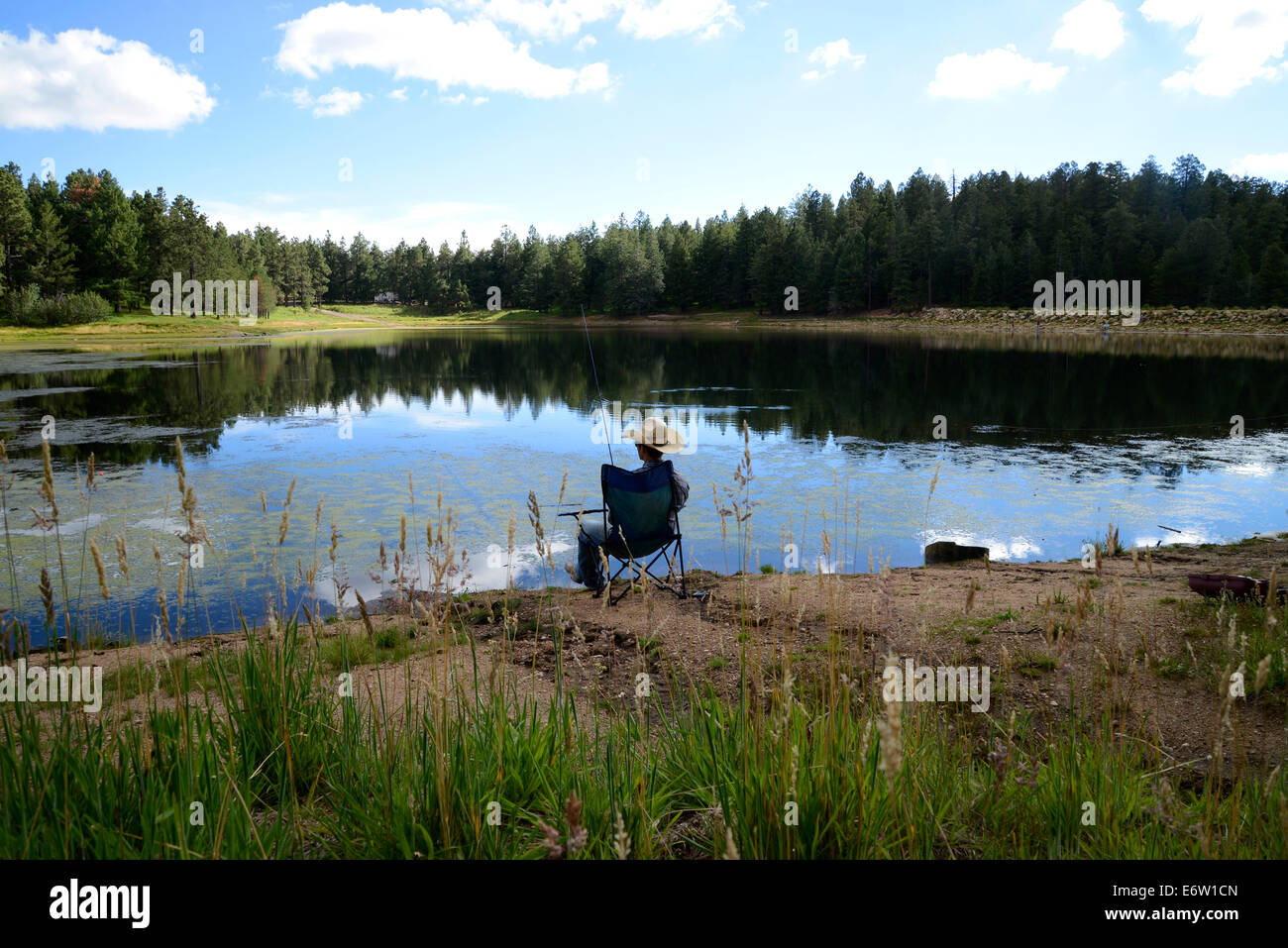 Fishing at riggs flat lake at mount graham in the pinale o for Camping and fishing in arizona