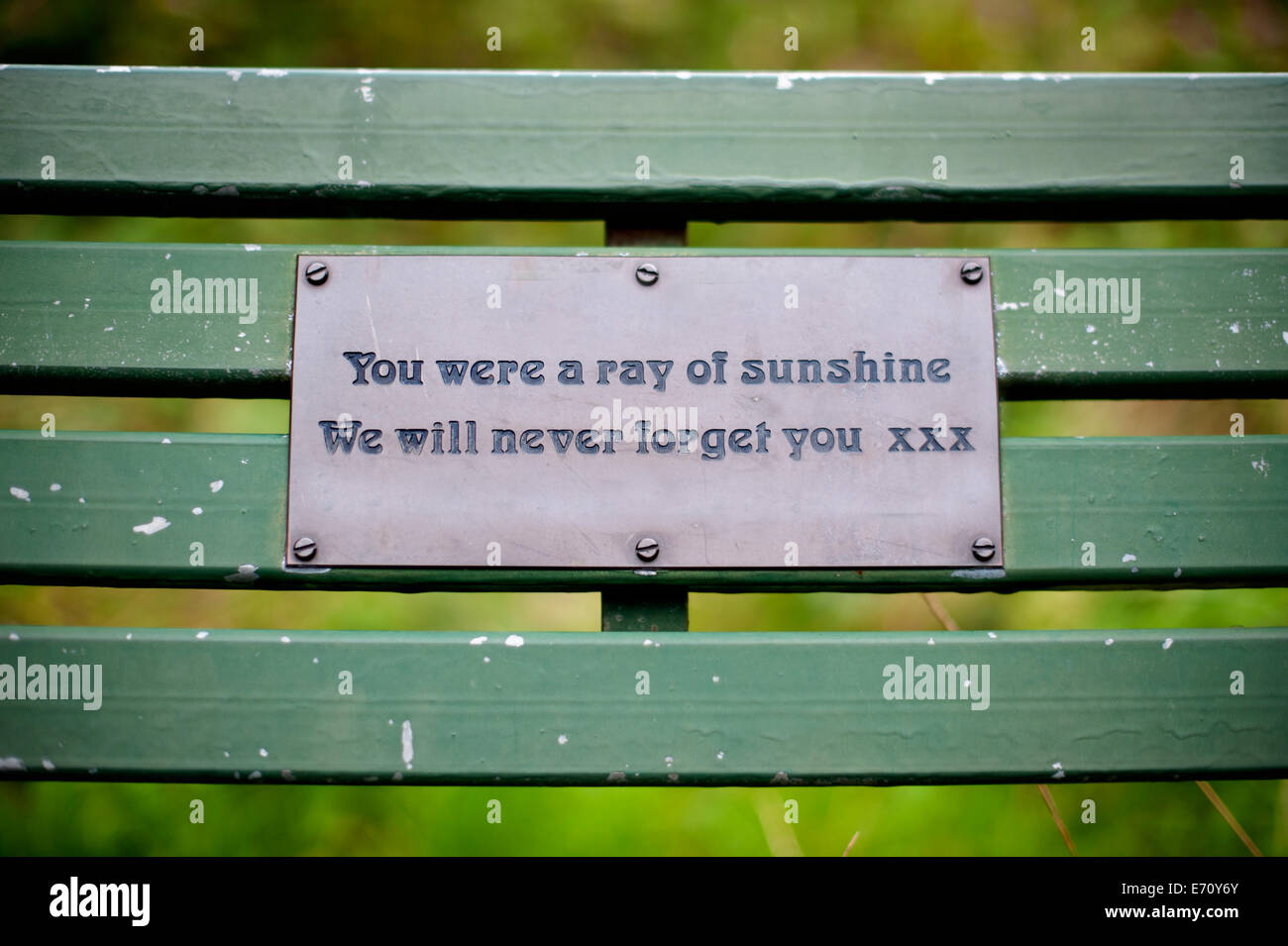 Memorial Plaque On A Bench Stock Photo Royalty Free Image 73165427 Alamy
