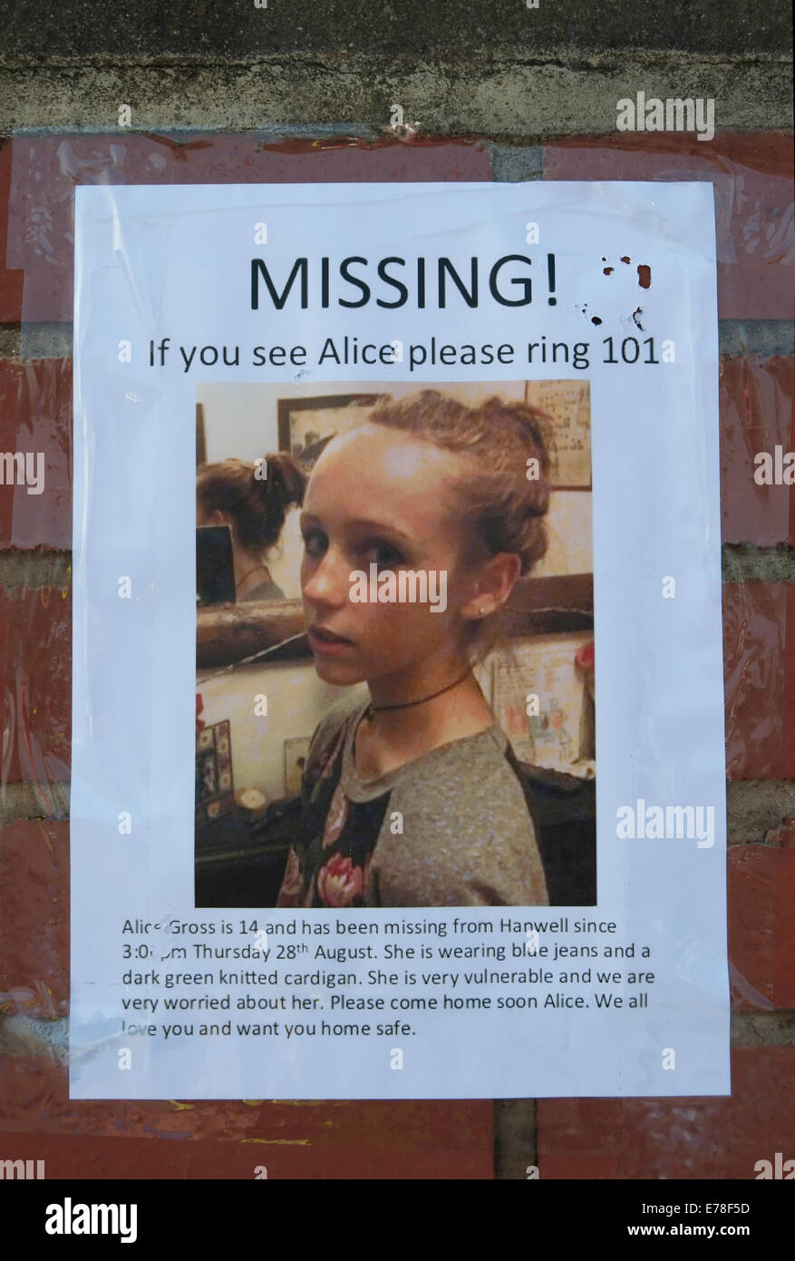 Missing Person Flyer For Alice Gross, Richmond Upon Thames, Surrey, England  Missing Person Flyer