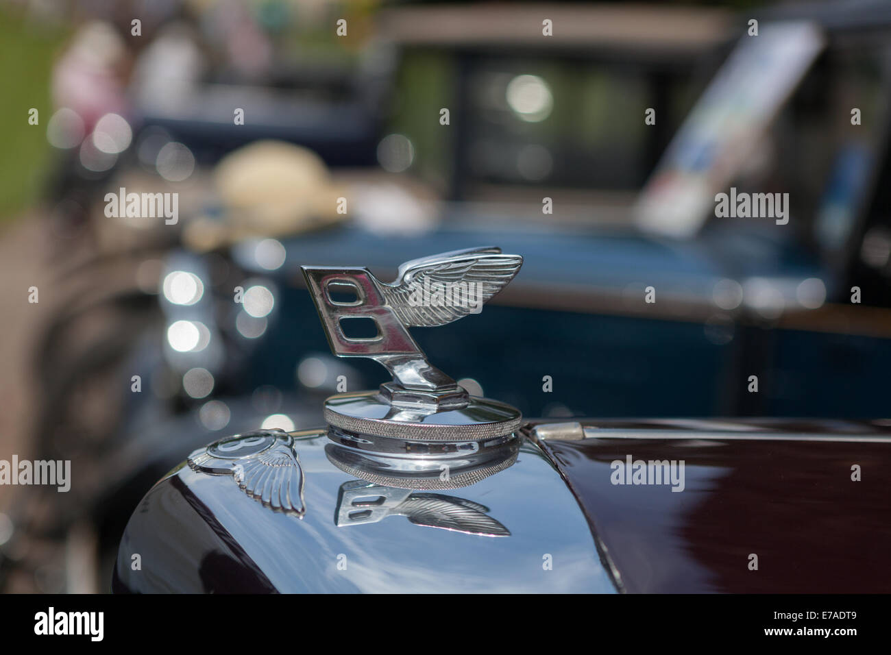 The mascot of the Bentley car company on a vintage car Stock Photo ...