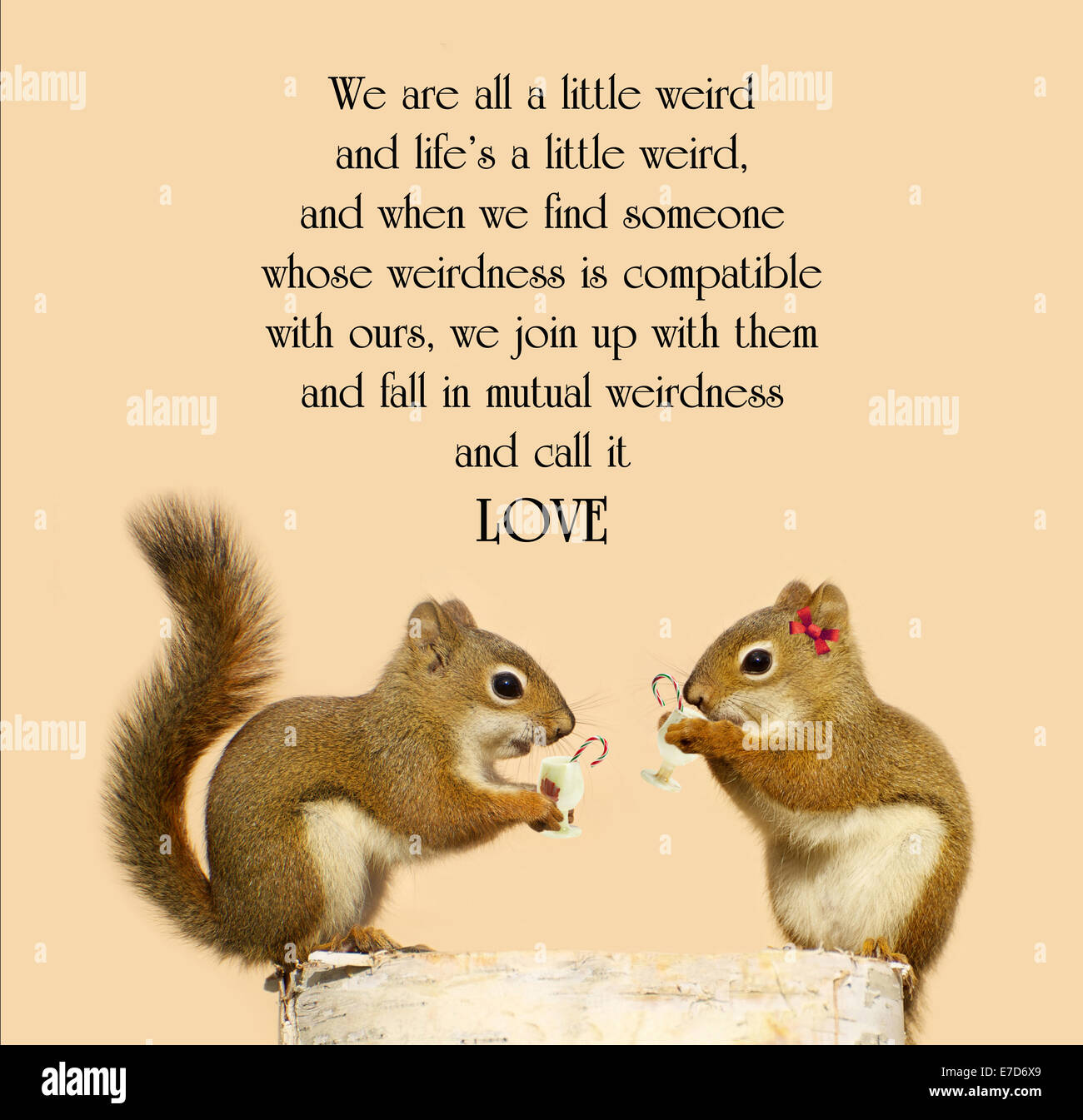 Dr Seuss Weird Love Quote Poster Dr Suess Stock Photos & Dr Suess Stock Images  Alamy