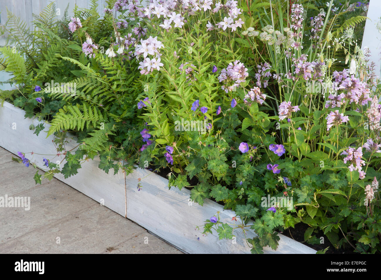 Garden   A Garden Of Solitude   Contemporary Garden Border Wall Made From  Reused Timber Planting Dryopteris Fl