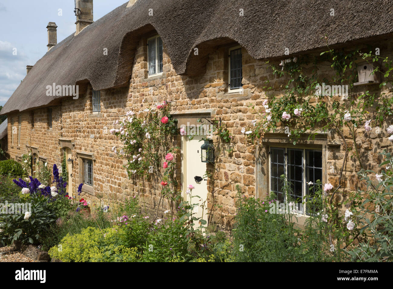 Rose Covered Cotswold Stone Thatched Cottages Great Tew Cotswolds Oxfordshire England United Kingdom Europe