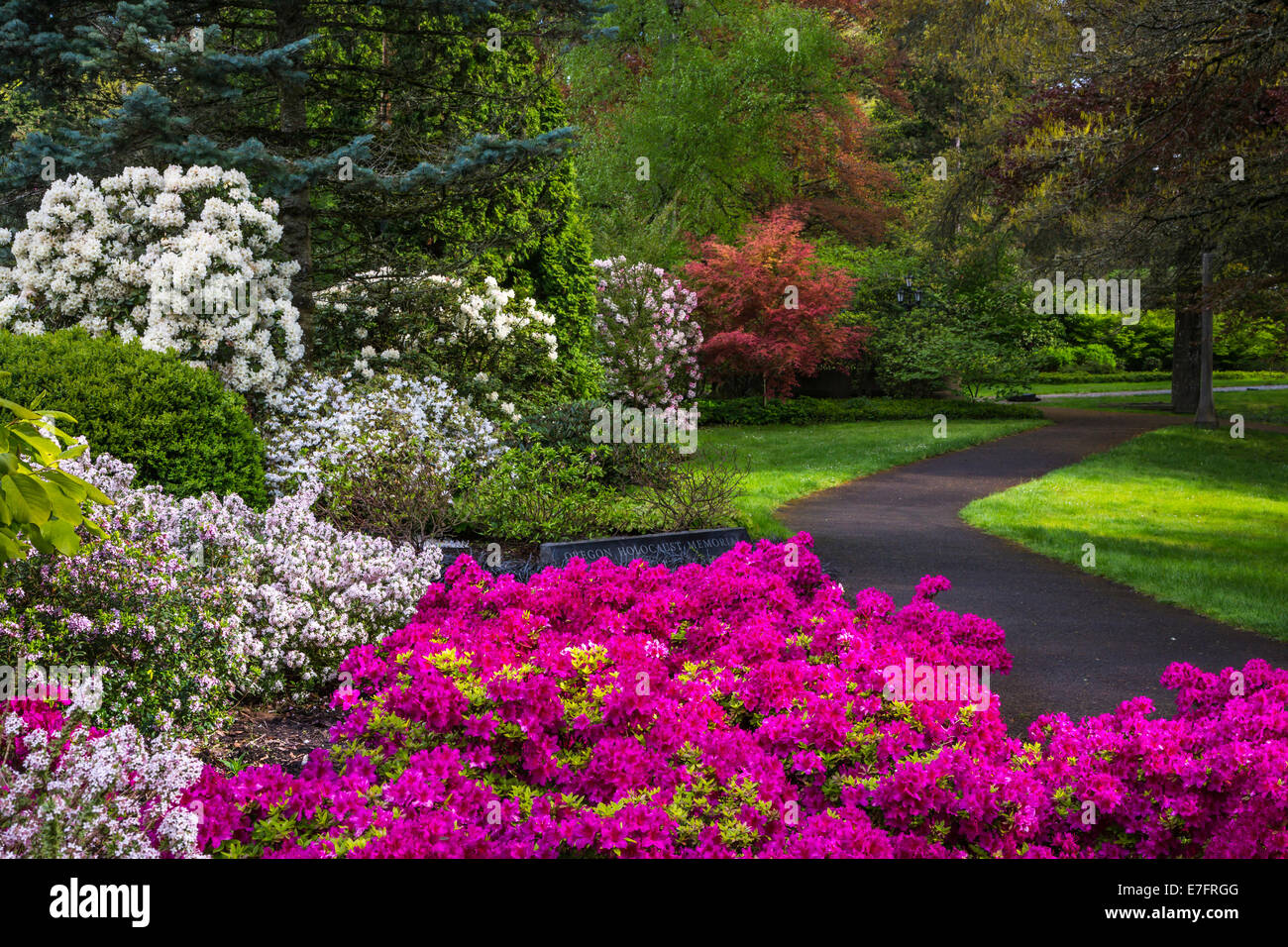 Spring Flower Displays In The Oregon Holocaust Memorial In Washington Stock Photo Royalty Free