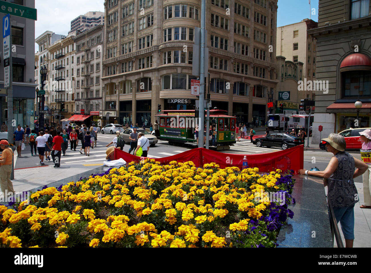 Flower Garden And Cable Car, Union Square, San Francisco, California, USA