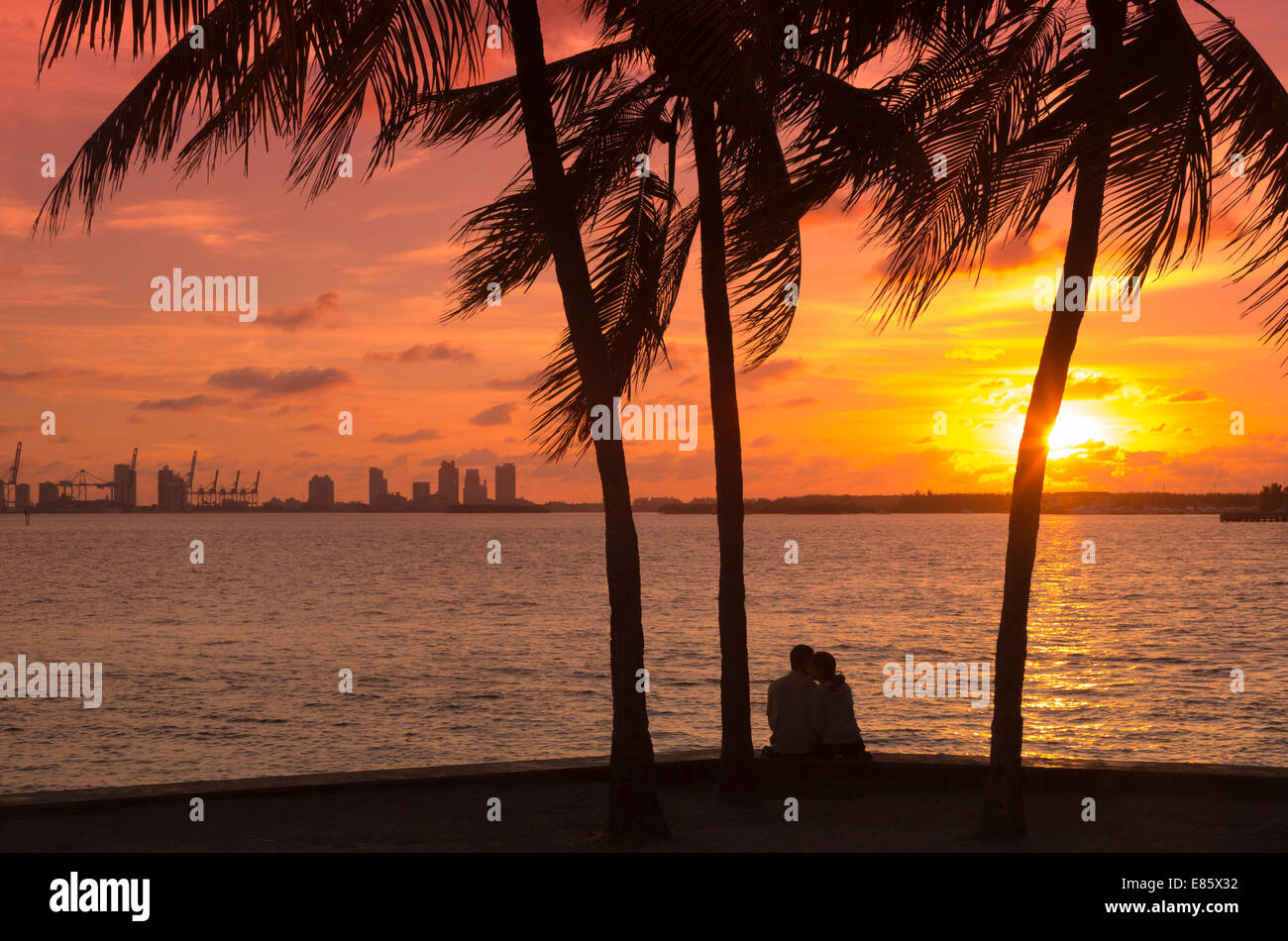 PALM TREES COUPLE SITTING MIAMI BEACH PORT OF SKYLINE BISCAYNE BAY FLORIDA USA