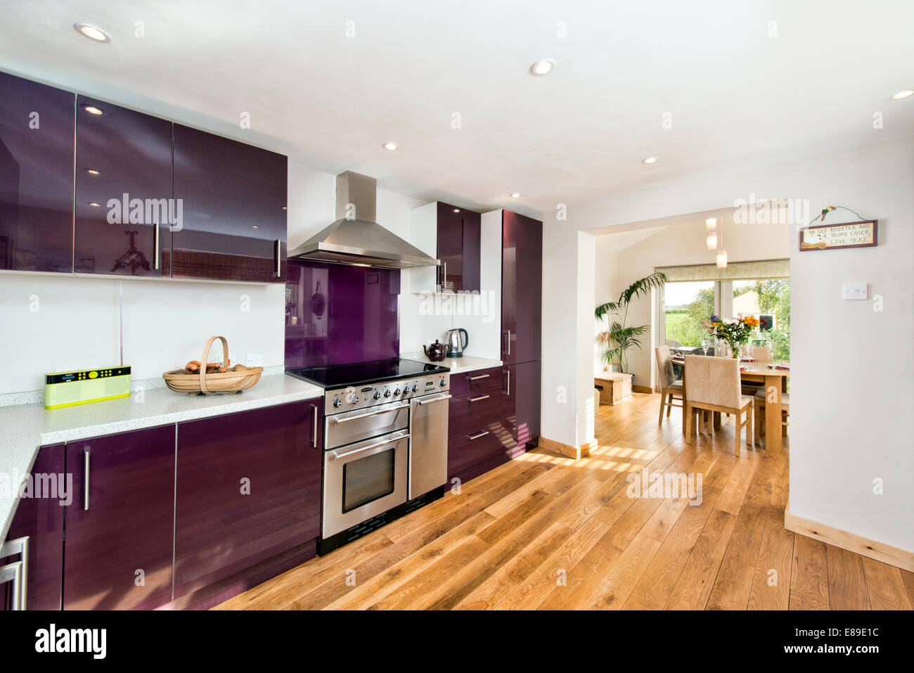 A Light, Airey, Contemporary Designer Kitchen Diner Decorated In Aubergine  U0026 White With Solid Wood Flooring