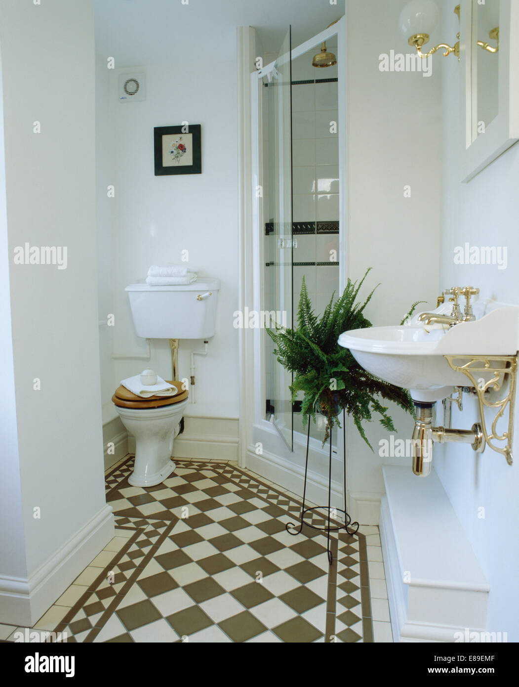 Blackwhite chequerboard flooring in white bathroom with boston blackwhite chequerboard flooring in white bathroom with boston fern on stand beside glass shower doors planetlyrics Image collections