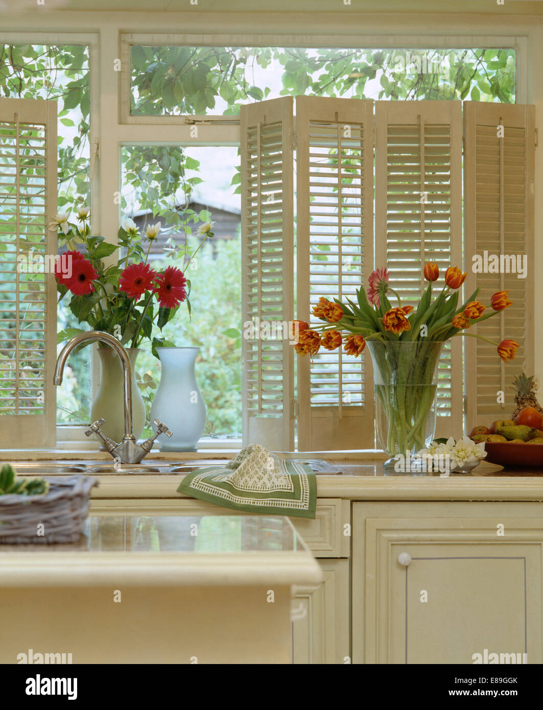 Red Gerberas And Orange Striped Tulips In Glass Vases On Kitchen Windowsill  With Cream Plantation Shutters