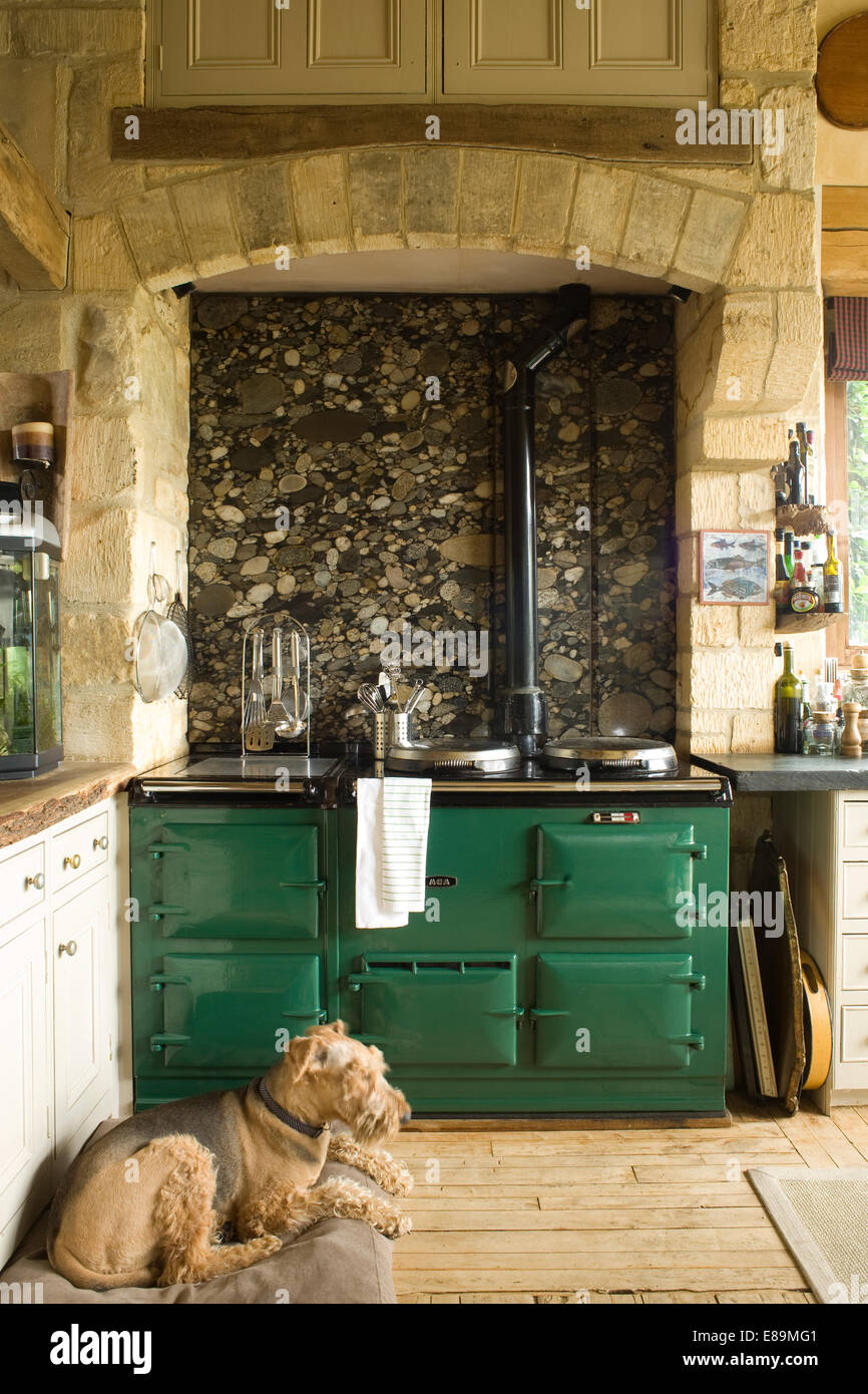 Green country kitchen - Dog Lying In Front Of Green Aga In Country Kitchen