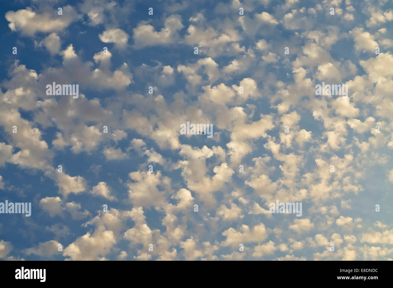 blue-sky-filled-with-small-puffy-clouds-