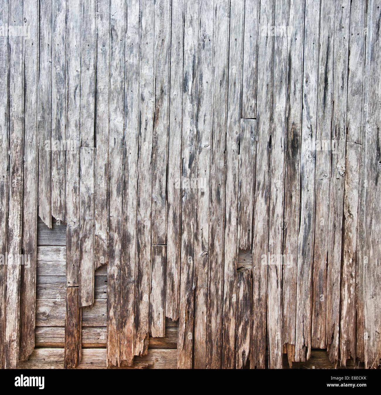 Barn Wood Texture old barn wood texture panorama (xxl stock photo, royalty free
