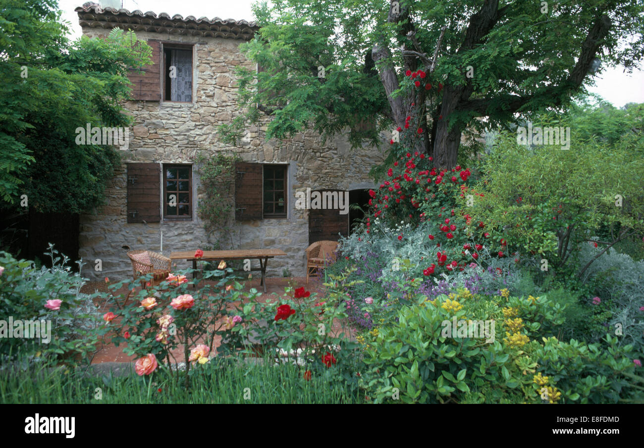 Patio Under Trees Outside An Old French Stone Farmhouse With A Wide Shrub Border Apricot And Red Roses