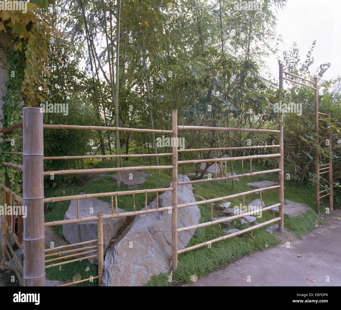 bamboo fence and natural rocks below small trees in japanese style stock photo royalty free. Black Bedroom Furniture Sets. Home Design Ideas