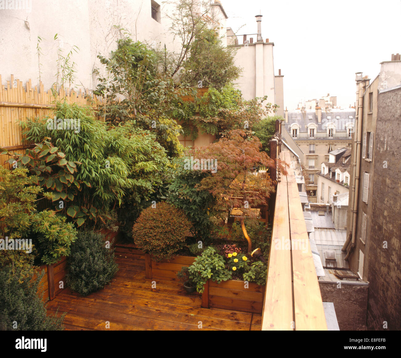 Lush Green Shrubs And Small Trees In Planters In Narrow Paris Roof Garden  With Wooden Decking