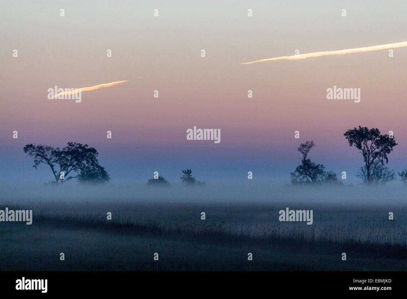 Sun_begins_to_rise_over_a_filed_of_morni
