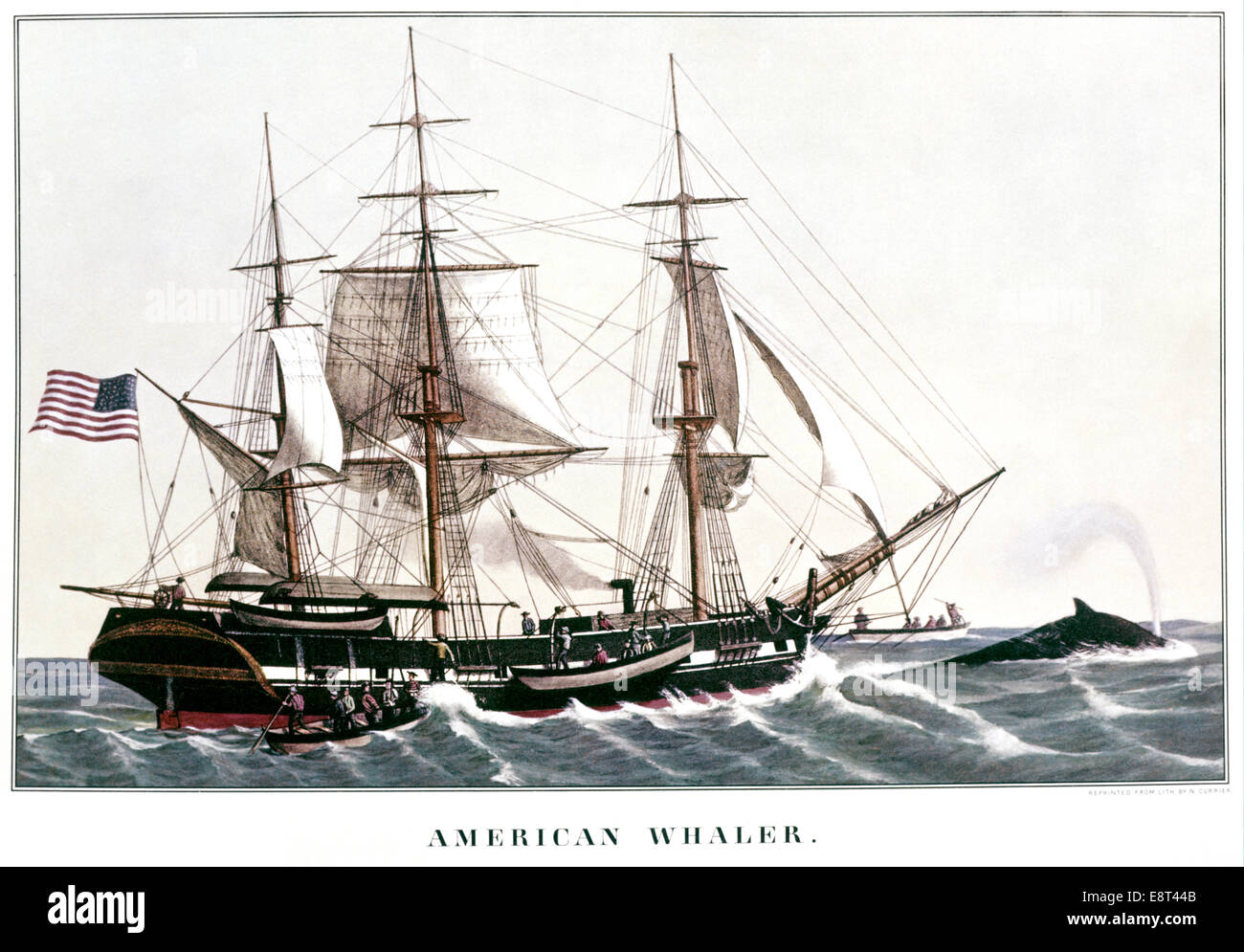 Whalers in action wood engraving published in 1855 stock illustration - Currier And Ives Lithograph Early American Whaling Ship Chasing Whale In Action Stock Image