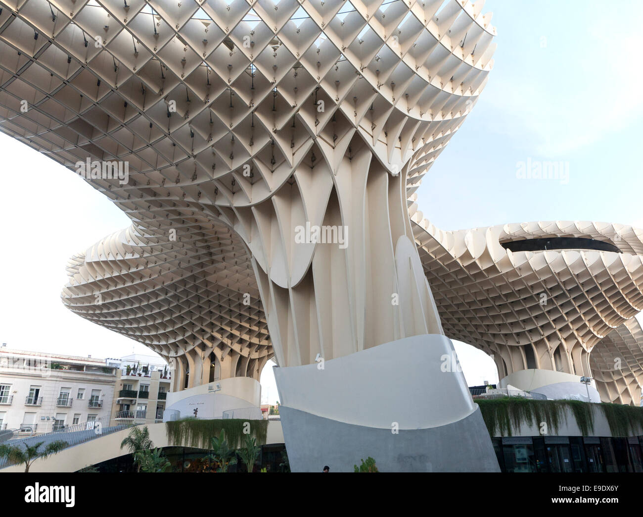Metropol parasol the world s largest wooden structure - Metropol Parasol Wooden Structure In Plaza La Encarnaci N Seville Spain Architect J Rgen Mayer Hermann Completed 2011