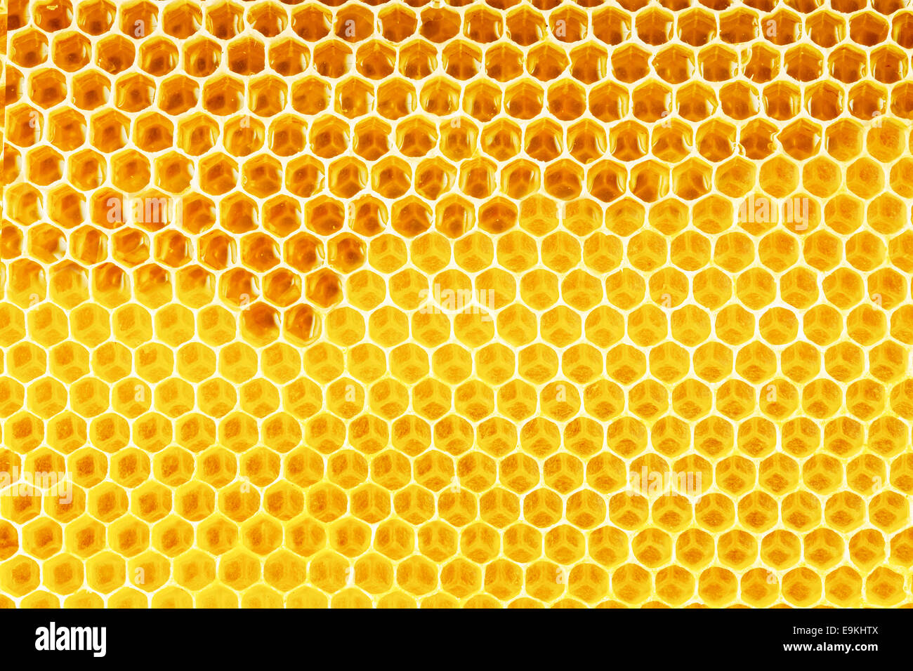 Natural honey in honeycomb background stock photo royalty free natural honey in honeycomb background voltagebd Image collections