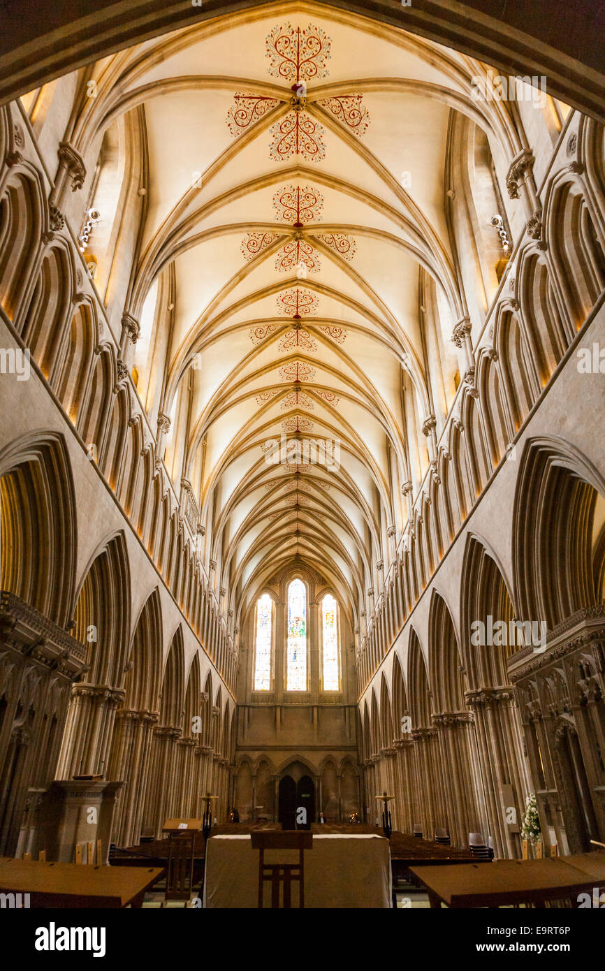 The Nave and vaulted ceiling of the nave of Wells ...