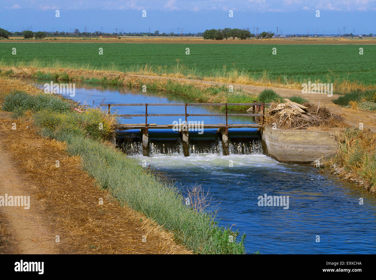 Agricultural Irrigation Canal : Agriculture an irrigation canal runs alongside