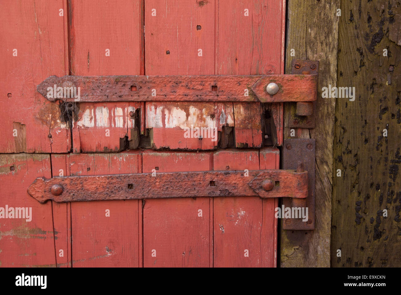 Old door with iron staple hinges & Old door with iron staple hinges Stock Photo Royalty Free Image ...