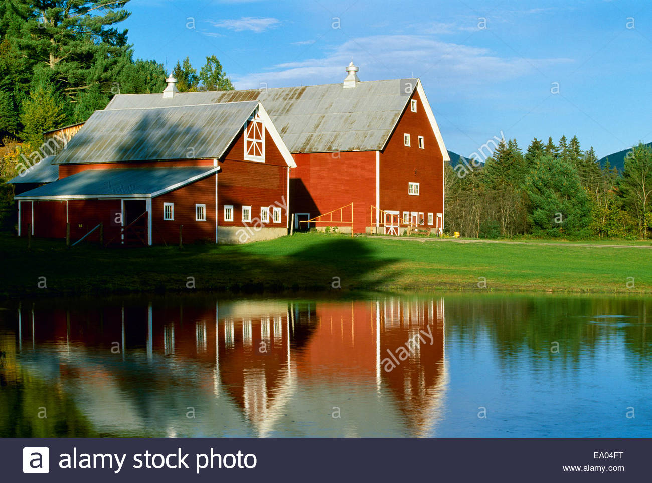 Agriculture Classic Red New England Barns Reflected In A