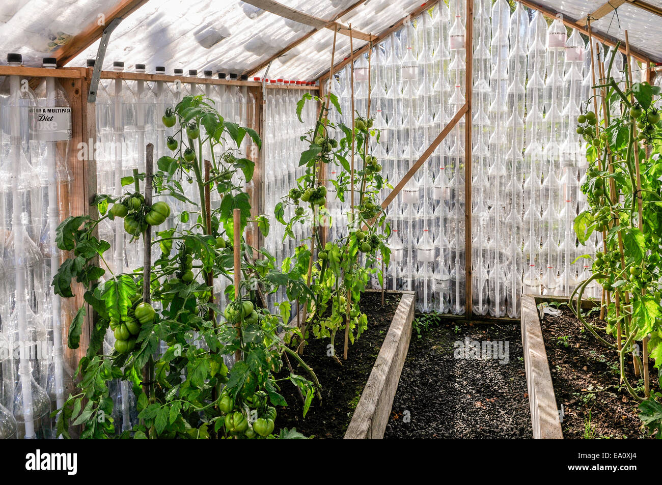 Plants Growing In A Greenhouse Made Entirely Of Recycled