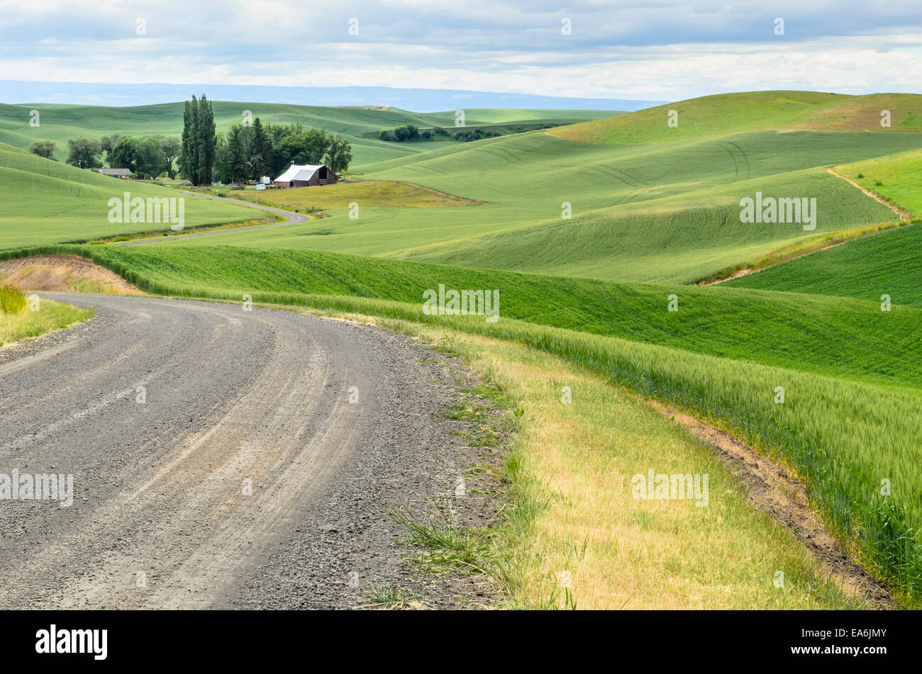 Usa washington state palouse scenic countryside stock Usa countryside pictures