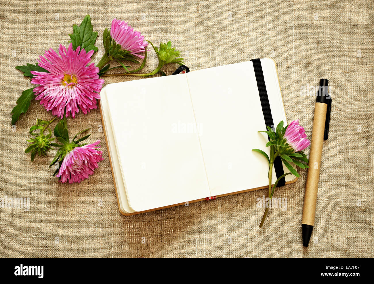 notebook page background with pen wwwpixsharkcom