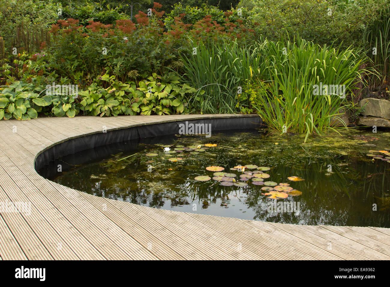 Garden pond and decking in garden stock photo royalty for Garden decking with pond