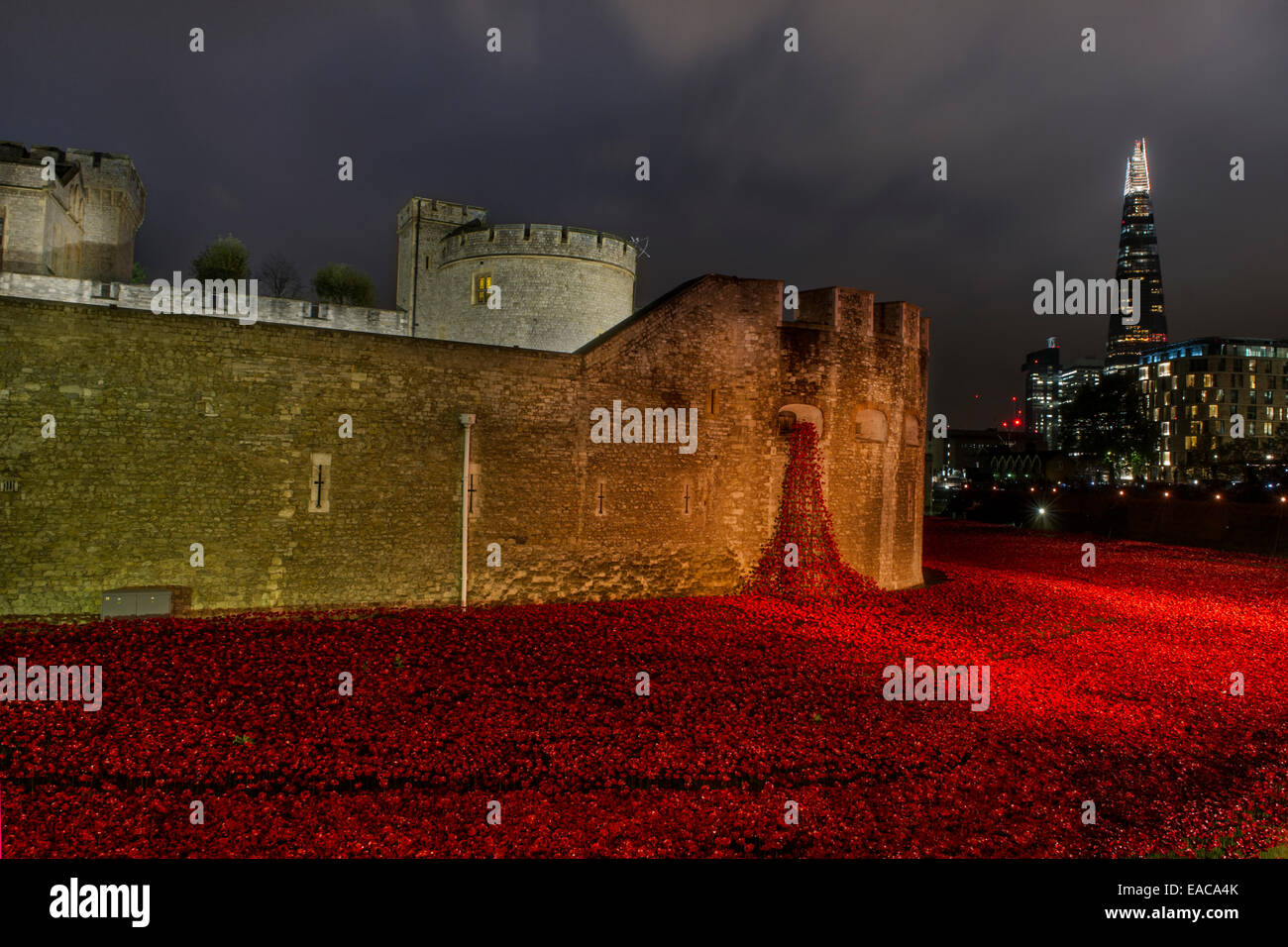 poppies for remembrance day 2014 saw the installation of 888 000
