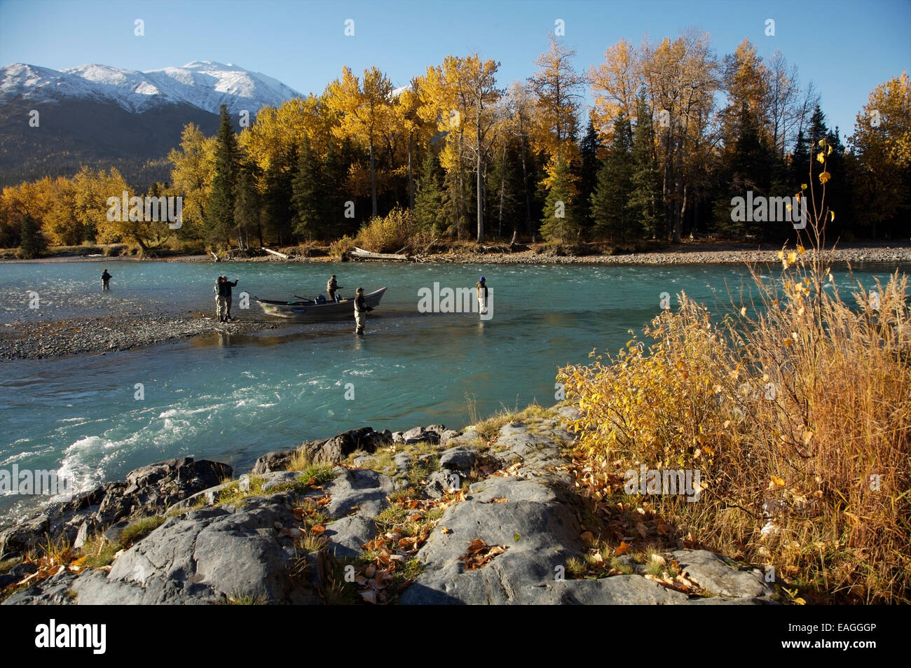Sport fishing on the kenai river near cooper landing for Cooper landing fishing guides