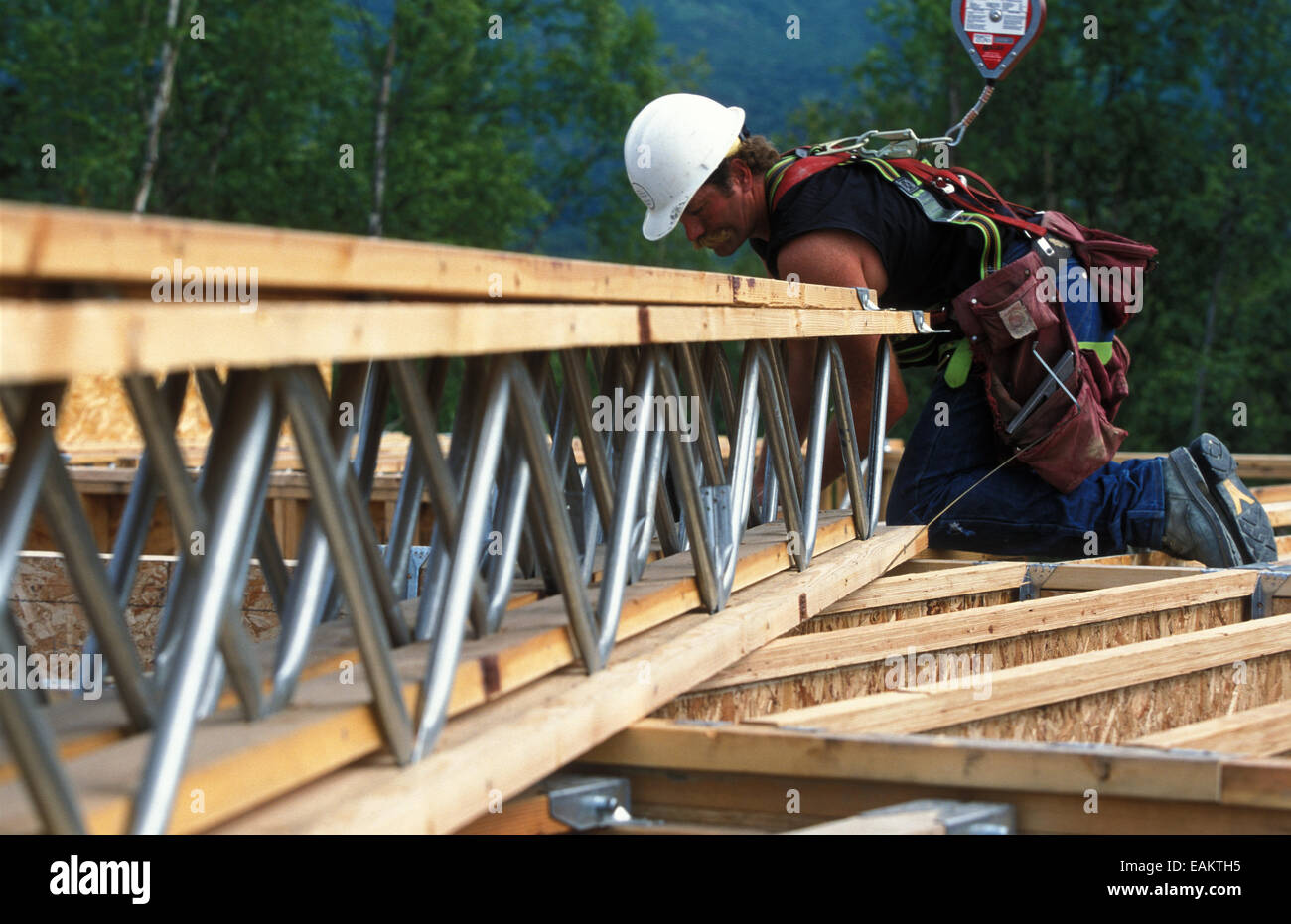 Construction Worker Wearing Safety Harness Working On Roof Tresses  Anchorage Alaska Summer