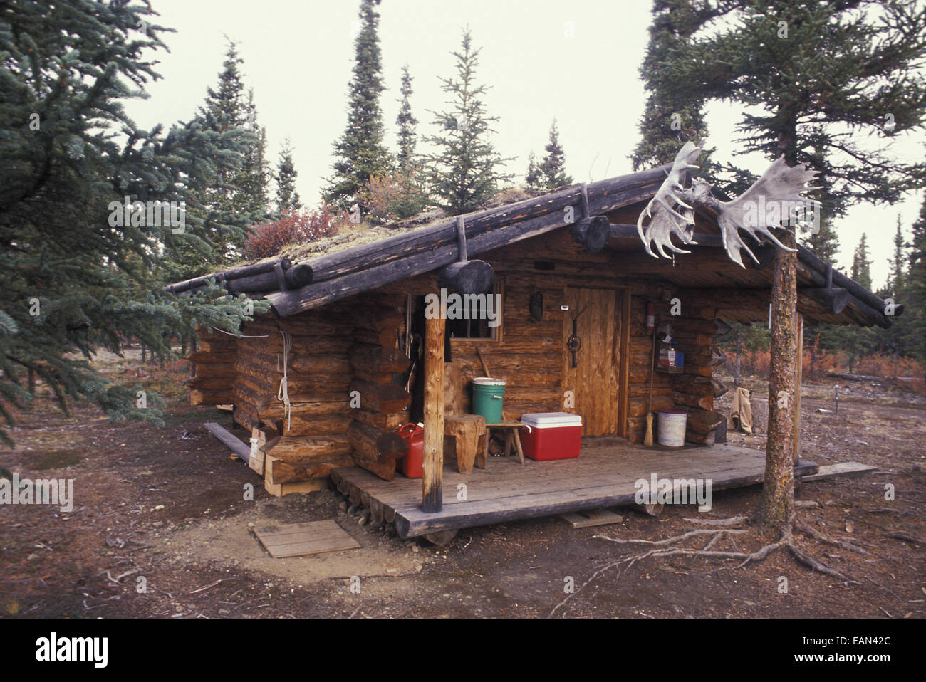 Log cabin near denali national park interior summer ak for Alaska cottage