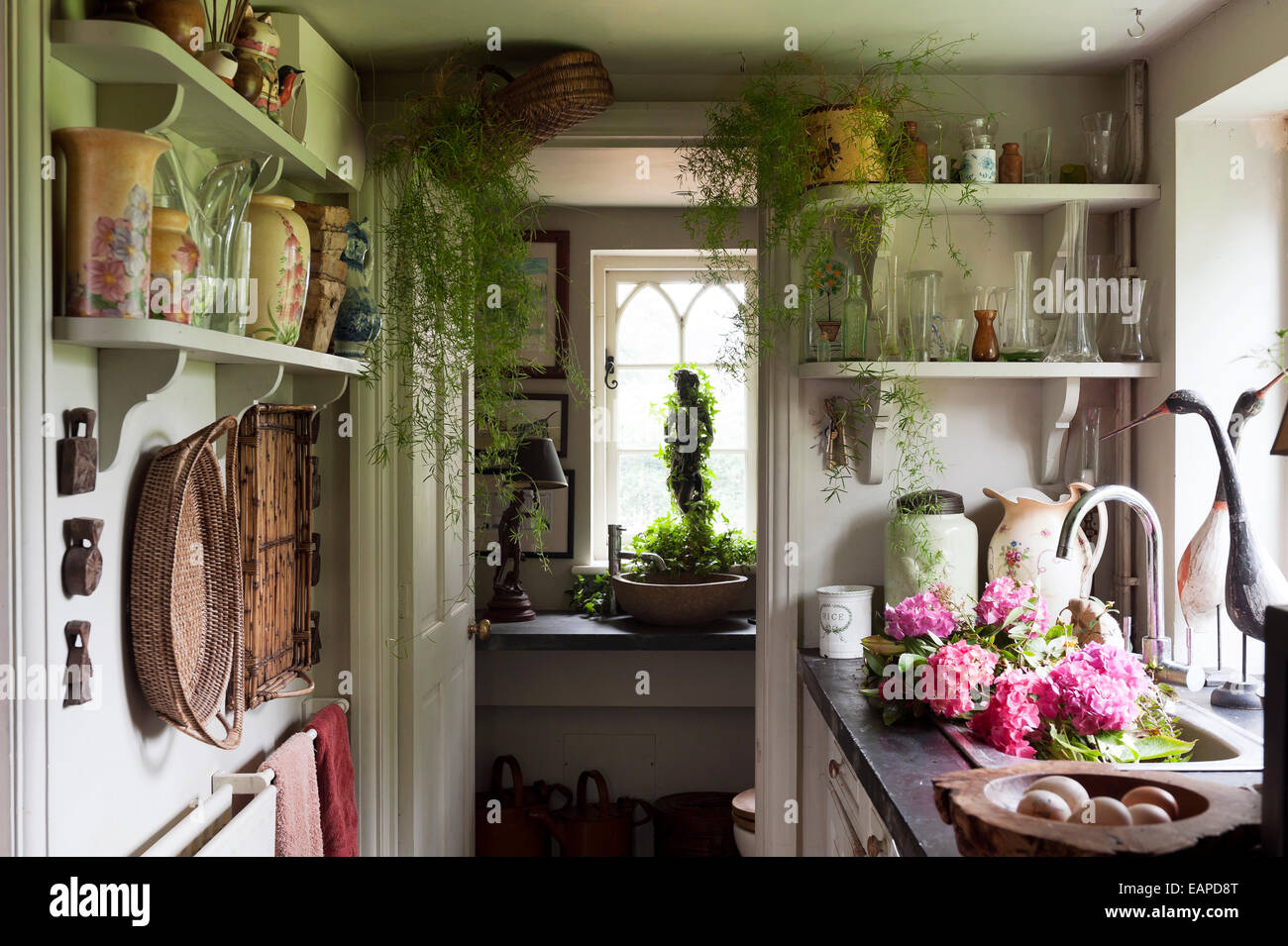 Galley Country Kitchen colourful vases on shelves in country kitchen galley stock photo