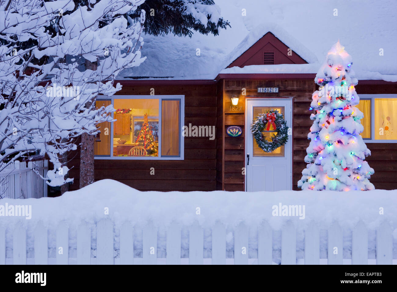 family home covered in snow with a lit christmas tree in the yard in