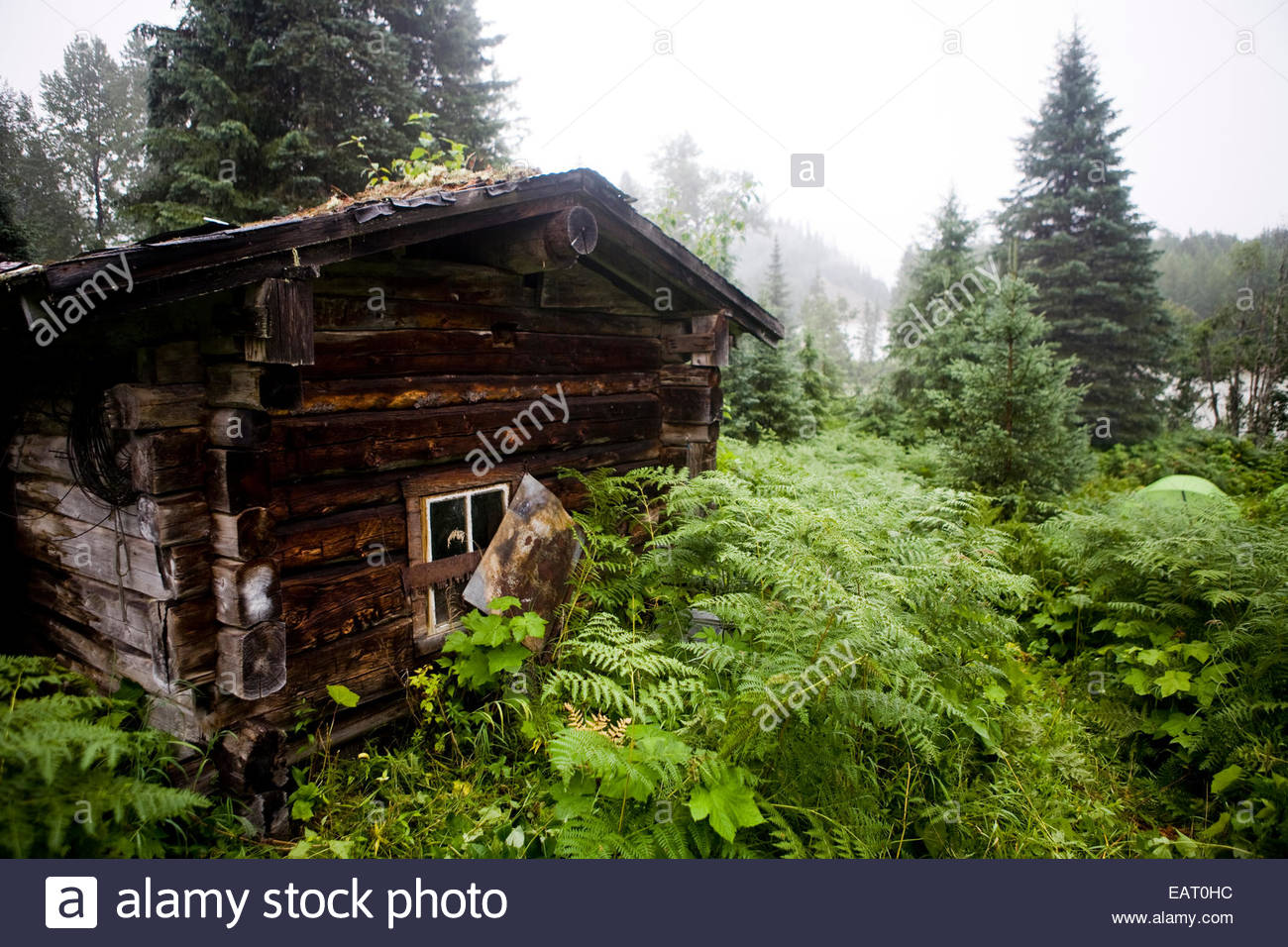A Rustic Log Cabin In The Remote Wilderness Of Western